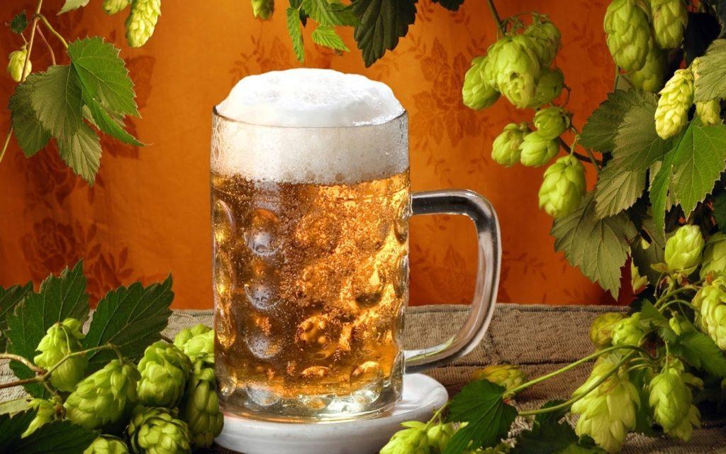 Реклама нового пива должны быть хорошо организованной