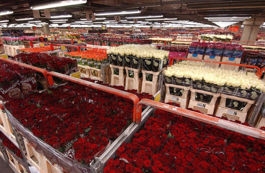 Закупка цветов