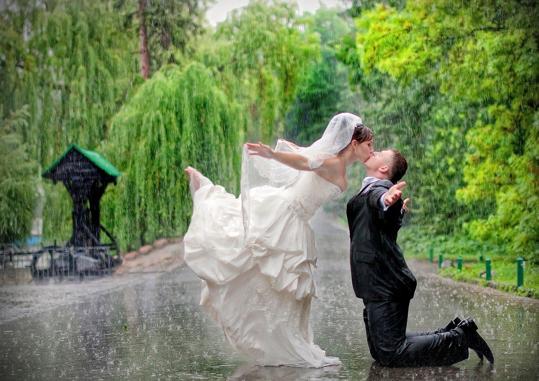 Как сделать свадебный фильм из фотографий